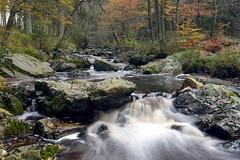 Autumn waterfall at la Hogne (Dominique Buntinx) Tags: autumn herfst hogne nikkor2470mm nikond800