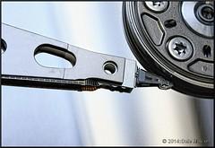 Hard Drive Macros (2.6 Million + views!!! Thank you!!!) Tags: macro closeup canon harddrive 1855mm xsi canonxsi pspx4 paintshopprox4