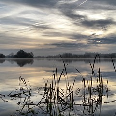 IMG_20141125_083226 (jwwwhite) Tags: ocean autumn trees winter england mist lake reflection clouds sunrise reeds relax suffolk still haze frost moody ripple norfolk frosty mornings tranquil eastanglia