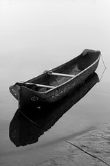 Stillness (Rodrigo Neves - Ca