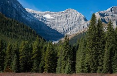 Canadian Rockies (Glatz Nature Photography) Tags: autumn canada fall nature rockymountains canadianrockies
