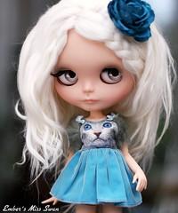Blue Swan (pure_embers) Tags: uk white cute love alpaca girl hair swan doll pretty dolls dress sweet kitty blythe neo custom miss pure takara embers neemo rbl reroot flection missswan cosmia bohemianpeace pureembers sharonavital embersmissswan embersswan