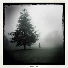 Fog_2 (soilse) Tags: cameraphone trees ireland dublin woman grass weather misty fog outdoors day afternoon foggy mobilephone ucd app firtree cellphonecamera iphone 2014 lightandshade blackeys womanwalking lowvisibility ultrachrome iphonephoto iphonecamera iphoneapp iphonography foggyconditions hipstamaticapp hipstamaticcamera blackeysultrachrome november2014