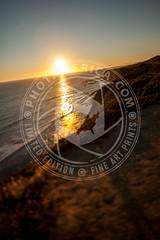 CALIFORNIA-941