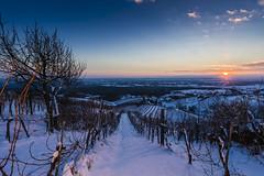 Winterzeit im Thermenland Steiermark! (Thermenland Steiermark) Tags: schnee winter österreich sonnenuntergang bad steiermark wein styria radkersburg thermenland thermenlandsteiermark