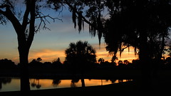 Mid December Sunset (Jim Mullhaupt) Tags: pink blue trees sunset red wallpaper sky orange lake color fall water weather silhouette yellow clouds reflections palms landscape evening pond nikon scenery flickr sundown florida dusk tropical coolpix bradenton p510 mullhaupt jimmullhaupt