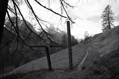 trail of freedom (Toni_V) Tags: bw monochrome schweiz switzerland blackwhite gate europe dof suisse bokeh rangefinder trail mp svizzera schwarzweiss engadin wanderweg 2016 graubnden grisons svizra sep2 summiluxm leicam unterengadin grischun engiadinabassa digitalrangefinder niksoftware 35lux messsucher 160430 silverefexpro2 35mmf14asphfle typ240 toniv scuolftanguardalavin m2404500