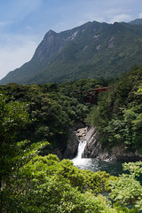 Troki-no-taki waterfall (houroumono) Tags: waterfall