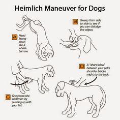 How to do the Heimli (gertvanemmenis) Tags: paradise do outdoor furniture how van wicker gert emmenis heimli