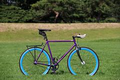 The Purple Steed! (M.Chopra) Tags: park blue bicycle portland purple state portlandia singlespeed fixed fixie fixedgear portlandor rosecity statebicycleco statebicyclecompany