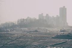 Ephemere 53 (lunecoree) Tags: 35mm canon eos horizon sigma korea coree extrieur calme 30d   siheung