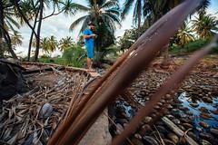 ES8A1511 (repponen) Tags: ocean trip beach garden island hawaii maui shipwreck gods lanai canon5dmarkiii
