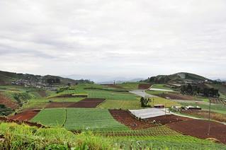 dieng plateau - java - indonesie 27