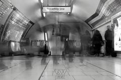 TUBE (lonewolf_studio) Tags: longexposure blackandwhite london underground photography metro low tube picadilly line londres fotografia blanconegro picadillyline largaexposicin fotografiaurbana