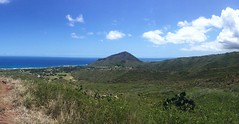 Casual Hike in Makapu'u (Kimberly C. Lee) Tags: cactus makapuu kokohead hawaiihiking hikehawaii