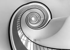 The way to Fibonacci (BWUA Photography) Tags: lille photography street architecture urban black white nikon bwua