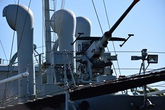 """HMAS Castlemaine (J244) 50 • <a style=""""font-size:0.8em;"""" href=""""http://www.flickr.com/photos/81723459@N04/27493163565/"""" target=""""_blank"""">View on Flickr</a>"""