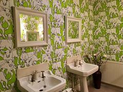 Muuuuuu (zia virgi) Tags: bathroom bagno cessismo