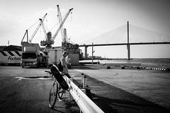 skater (.mdb) Tags: ocean street city bridge urban japan port fuji candid skate fujifilm skater fukuoka tenjin kyushu x70 hakata