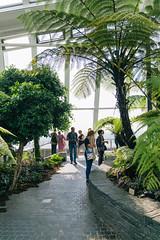 Untitled (Chang Tai Jyun) Tags: uk england sky green london nature garden gb skygarden  euroupe