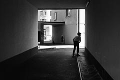 What's there? (gato-gato-gato) Tags: street leica summer bw white black film blanco monochrome analog 35mm person schweiz switzerland flickr noir suisse strasse zurich negro streetphotography pedestrian rangefinder human streetphoto monochrom zrich svizzera weiss zuerich blanc ilford m6 manualfocus analogphotography schwarz ch onthestreets passant mensch sviss leicam6 zwitserland isvire zurigo filmphotography streetphotographer homedeveloped fussgnger manualmode zueri strase filmisnotdead streetpic messsucher manuellerfokus gatogatogato fusgnger leicasummiluxm35mmf14 gatogatogatoch wwwgatogatogatoch streettogs believeinfilm tobiasgaulkech