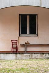 Essenzialita (Danilo Mazzanti) Tags: danilo danilomazzanti mazzanti wwwdanilomazzantiit fotografia foto fotografo photography photos sedia casa esterno minimal minimalismo tranquillit serenit volta erba