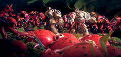 Suffer Not the Alien to Live (Will Vale) Tags: jungle 28mm 40k scifi darkangels genestealer tyranid warhammer spacemarines wh40k tyranids deathworld gamesworkshop