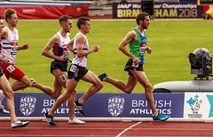 mens 1500m (stevennokes) Tags: woman field athletics birmingham track meadows running smith mens british hudson sainsburys asher muir hurdles rooney 100m 200m sprinter 400m 800m 5000m 1500m mccolgan twell