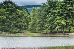 Darran Park Lake Ferndale Rhondda (3) (Mal.Durbin Photography) Tags: rhonddacynontaf rhonddacynontaff rct rctlandscape maldurbin walesuk southwalesuk