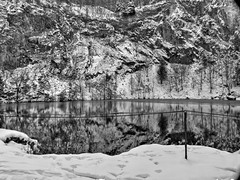 Winterly Tristesse at a Quarry Pond 05 (MJWoerner49) Tags: outdoor nature gloominess murkiness rees weather winter ice rocks structure surface reflection cold frosty winterly wintery wintry lake pond pool quarry quarrypond glacial icy