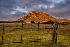 Gateway to Mt Maroon - HFF (NettyA) Tags: 2016 australia mtmaroon qld queensland sonya7r scenicrim seqld winter gate hff fence clouds sunrise rural farmland grass landscape
