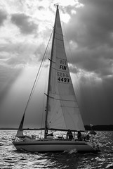 Donna at the Helsinki-Tallinna Race (Antti Tassberg) Tags: 2016 bw blackandwhite donna helsinki htr monochrome purjehdus purjevene race regatta sailing sailingboat tallinna yacht