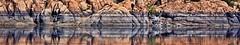 LIFE IS A CABARET (Irene2727) Tags: lake lakewatson prescott arizona reflection rocks water waterreflection landscape waterscape scape ~themagicofcolours~ix