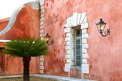 Corfu, Greece (Frans.Sellies) Tags: img7405 corfu greece palm palmtree cycad