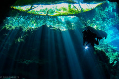 Cenote (jcl8888) Tags: mayan natural nature mexico yucatn silouhuette diver underwater cavern cave cenote scuba lightbeams freshwater adventure travl light green blue nikon d7200 tokina 1017mm fisheye wideangle