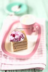 Cottage Cheese No Sugar Cake (AlenaKogotkova) Tags: cake baking cottagecheese healthy food foodphoto babyfood nosugar nosugarcake dessert sweet nosugardessert healthydessert babycake