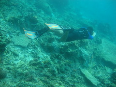Coral & Snorkling Pulau Biawak