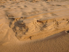 Formby Beach (Scorgie95) Tags: uk england west beach point britain north national trust formby sefton