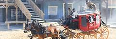 Wild Western (Anders Sellin) Tags: wild vacation horse sol strand skne high cowboy sweden bad western sverige semester sommar sterlen 2014 hst chapparral diligens sandbacka