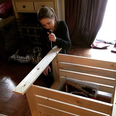 """Starting our indoor garden featuring @cubits seeds. :) • <a style=""""font-size:0.8em;"""" href=""""http://www.flickr.com/photos/10624169@N08/15673175994/"""" target=""""_blank"""">View on Flickr</a>"""