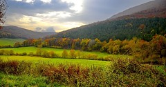 _DSC7163 (andoni.guridi) Tags: autumn fall spain otoño navarra 2014 basaburua