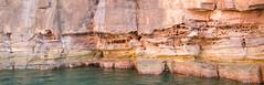 MJO-7806.jpg (Matt OZW) Tags: sandstone australia places lindblad geology kimberley hunterriver honeycombweathering kinggeorgeriver nationalgeographicorion