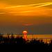 Cuxhaven, Muschelgrund. Kurz vor dem Einbruch der Nacht im Nationalpark Wattenmeer -- Just before nightfall in the Wadden Sea National Park.