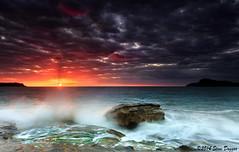 0S1A1304 (Steve Daggar) Tags: seascape sunrise landscape centralcoast pearlbeach