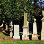 sunny cemetery