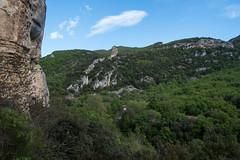 (giuli@) Tags: france color colour digital colore climbing provence falesia francia provenza arrampicata crag buoux giuliarossaphoto noawardsplease nolargebannersplease fujinonxf18mmf2r fujifilmxe1