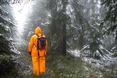 Rainsuit in the sleet-0708.jpg (stensethphoto) Tags: trees orange snow nature rain weather yellow oslo norway forest norge no norwegen rainwear sleet rainsuit vr