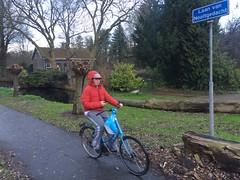 Nooitgedacht (huphtur) Tags: street autumn winter cold bike sign rotterdam thenetherlands lane ah albertheijn leafs omafiets nooitgedacht