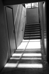 Light the Way Up (JB by the Sea) Tags: california blackandwhite bw stairs stair staircase stanford paloalto stanforduniversity cantorcenterforvisualarts october2014