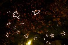 silent night (*F~) Tags: trees light night stars earth explore angels silence terra silentnight